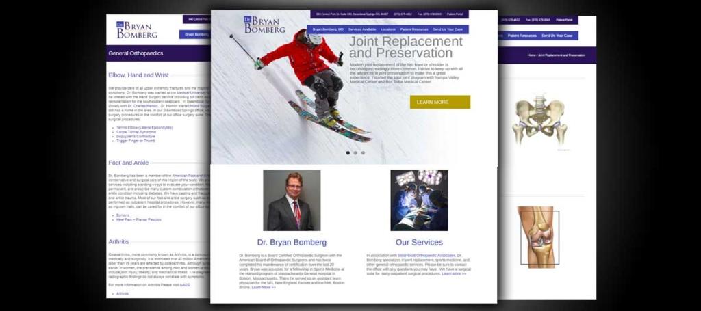 Dr Brian Bomberg Portfolio